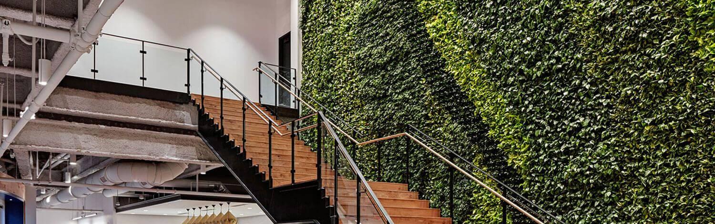 Вертикальное озеленение Сапфир