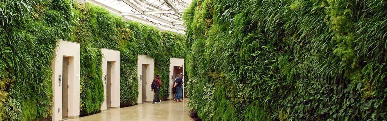 Сады в интерьере