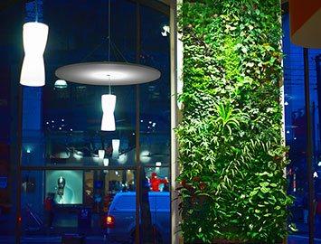Вертикальное озеленение в кафе