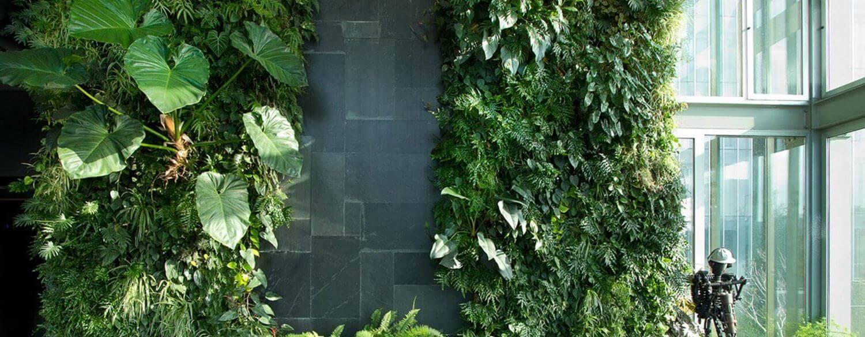 Вертикальный сад из живых растений